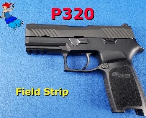 P320 Field Strip Post image