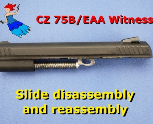 CZ Slide video post picture