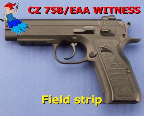 CZ 75B Field Strip video post image