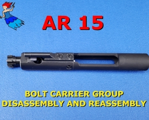 AR Bolt Carrier disassembly and reassembly post image